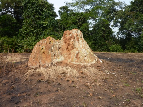 Nansubuga Cultural Hill - offerings made for twins
